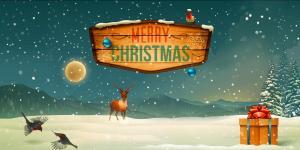 Vinylbakgrund 1.5x3m - Merry Christmas skylt