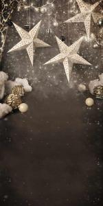Vinylbakgrund 1.5x3m - Julstjärnor svart & beige